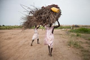 Leitchor, région de Gambella, Ethiopie. Le camp de réfugiés de Leitchor accueille entre 30 000 et 47 000 Sud-soudanais. Deux femmes transportent du bois pour cuisiner. Juin 2014.