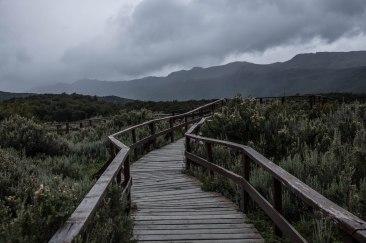 Début de la ruta 40, Ushuaia, Parque Nacional Tierra del Fuego, Patagonie, Argentine, mars 2017