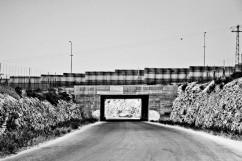 Sur la route de Qalqilya, territoire palestinien occupé. Août 2009