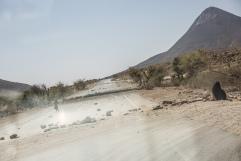 Yemen, gouvernorat de Saada, mars 2018. La route entre Saada et Khamer, bombardée par la coalition internationale dirigée par l'Arabie Saoudite et les Emirats arabes unis